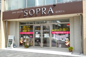 SOPRA GINZA 津田沼店